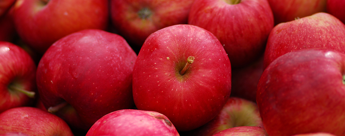 """Is There Any Truth To """"An Apple A Day?"""""""